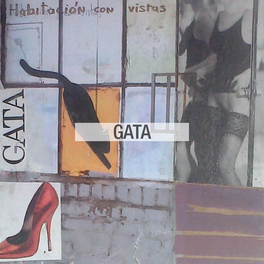 Gata Edition estampados tela Fama 2020 03